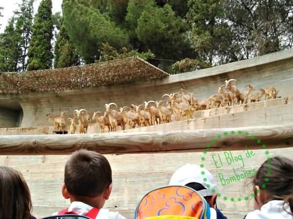 Excursión al zoo